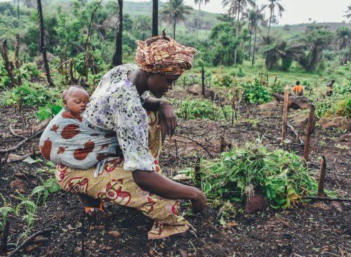 Klimatske promene i afrička tragedija